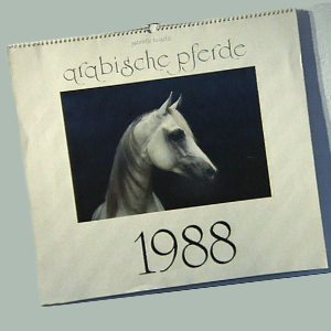 Calendar of the year 1988